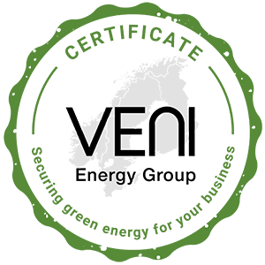 VENI - Green Energy logo
